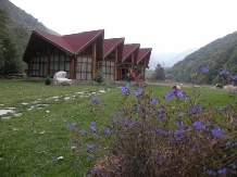 Cabana Retezat - accommodation in  Hateg Country (04)