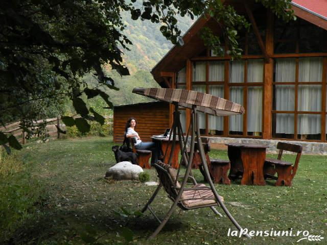 Cabana Retezat - accommodation in  Hateg Country (05)