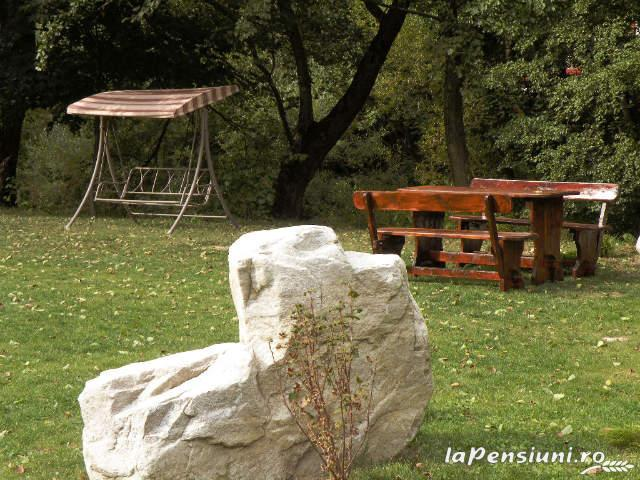 Cabana Retezat - accommodation in  Hateg Country (06)