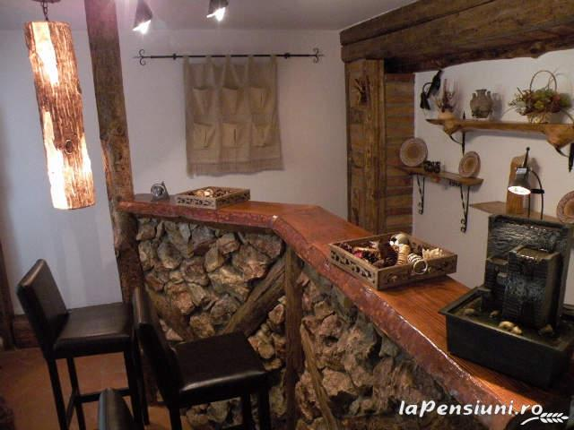 Cabana Retezat - accommodation in  Hateg Country (08)