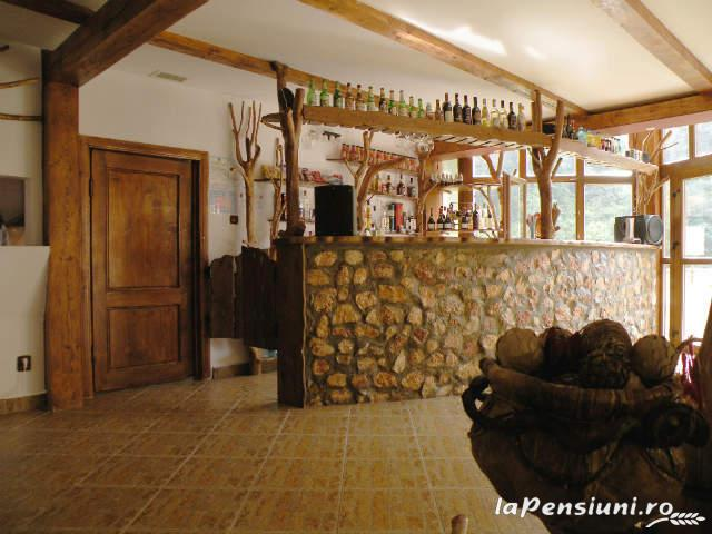 Cabana Retezat - accommodation in  Hateg Country (09)