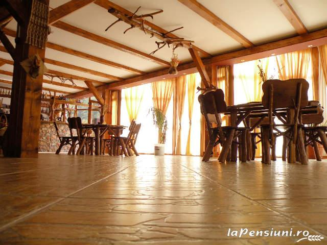 Cabana Retezat - accommodation in  Hateg Country (10)