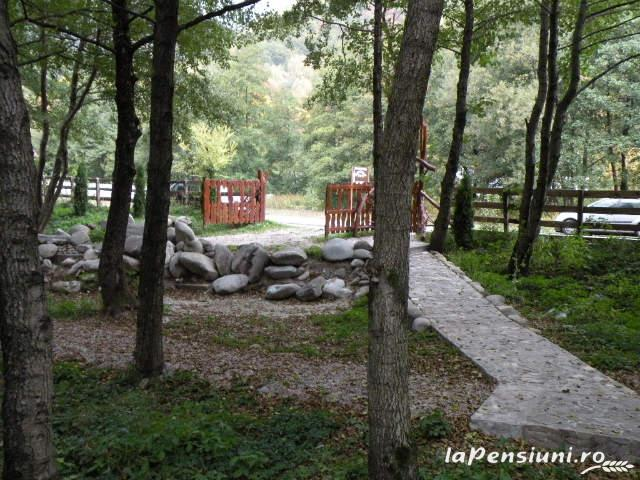 Cabana Retezat - accommodation in  Hateg Country (13)