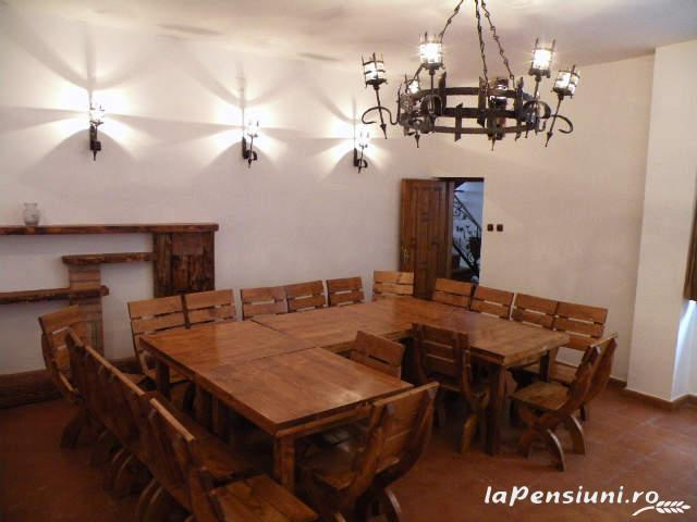 Cabana Retezat - accommodation in  Hateg Country (17)