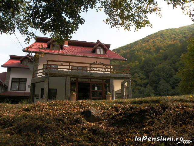 Cabana Retezat - accommodation in  Hateg Country (21)