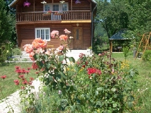 Pensiunea Venus - accommodation in  Hateg Country (01)
