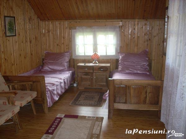 Pensiunea Venus - accommodation in  Hateg Country (05)