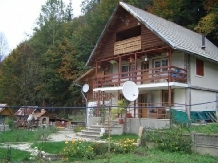 Pensiunea Lazarul - accommodation in  Hateg Country (01)