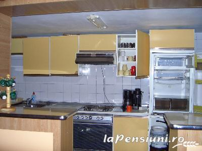 Pensiunea Lazarul - accommodation in  Hateg Country (02)