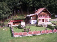 Pensiunea Lazarul - accommodation in  Hateg Country (03)