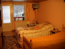 Pensiunea Lazarul - accommodation in  Hateg Country (05)