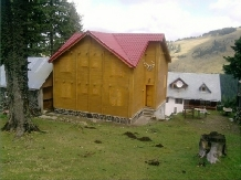Cabana Cerbul - accommodation in  Hateg Country, Transalpina (04)
