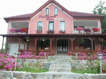 Pensiunea Flori - accommodation in  Hateg Country (01)