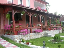 Pensiunea Flori - accommodation in  Hateg Country (04)