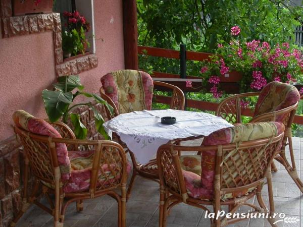 Pensiunea Flori - accommodation in  Hateg Country (06)