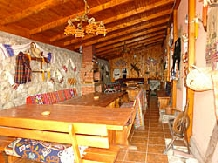 Pensiunea Flori - accommodation in  Hateg Country (07)