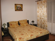 Pensiunea Flori - accommodation in  Hateg Country (10)
