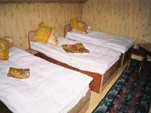 Pensiunea Raul - accommodation in  Hateg Country, Transalpina (04)