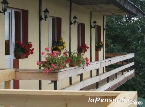 Pensiunea Alexia - accommodation in  Hateg Country, Transalpina (01)