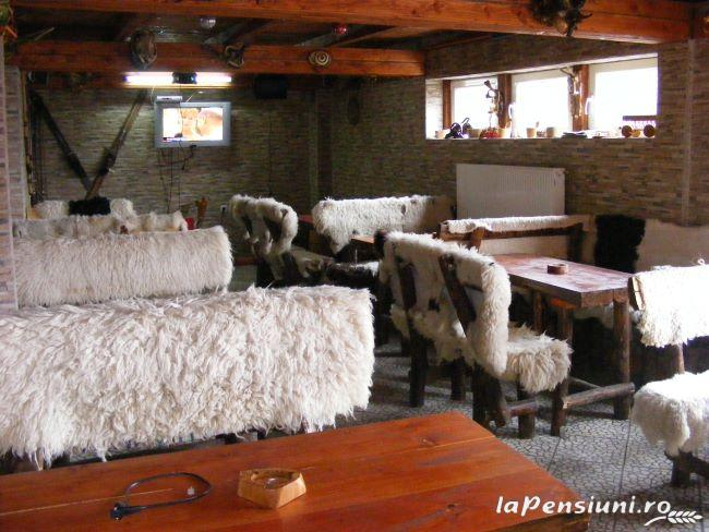 Cabana La Mario - accommodation in  Hateg Country, Transalpina (06)