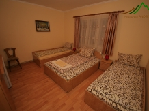 Pensiunea Andreea - accommodation in  Apuseni Mountains (02)