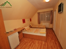 Pensiunea Andreea - accommodation in  Apuseni Mountains (04)