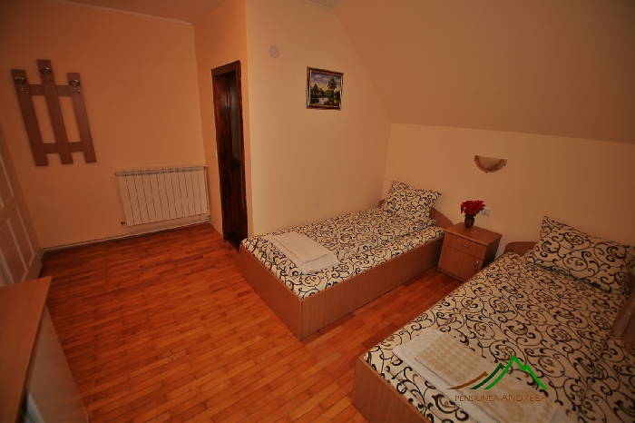 Pensiunea Andreea - accommodation in  Apuseni Mountains (07)