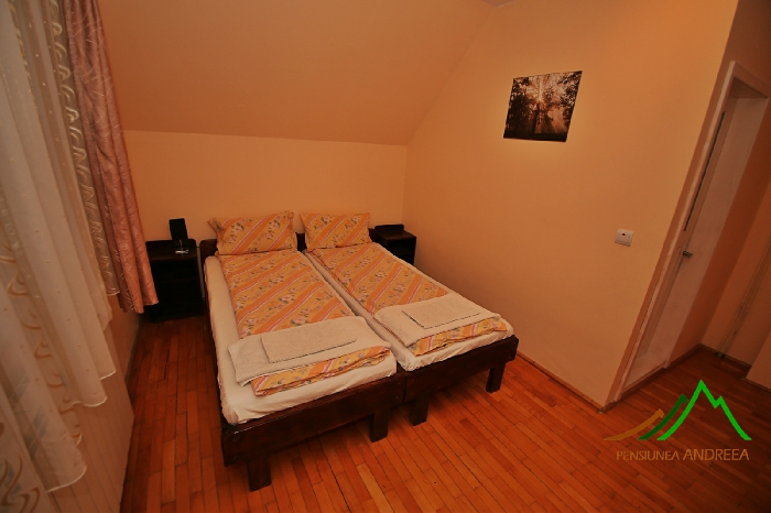 Pensiunea Andreea - accommodation in  Apuseni Mountains (08)