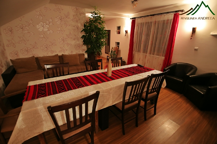 Pensiunea Andreea - accommodation in  Apuseni Mountains (10)