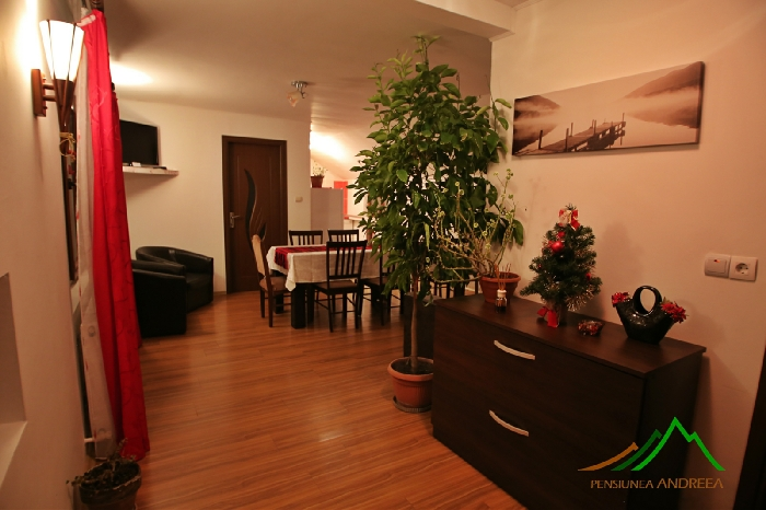 Pensiunea Andreea - accommodation in  Apuseni Mountains (11)