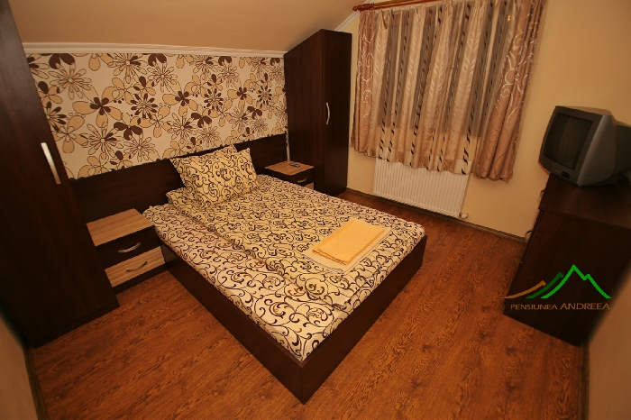 Pensiunea Andreea - accommodation in  Apuseni Mountains (12)