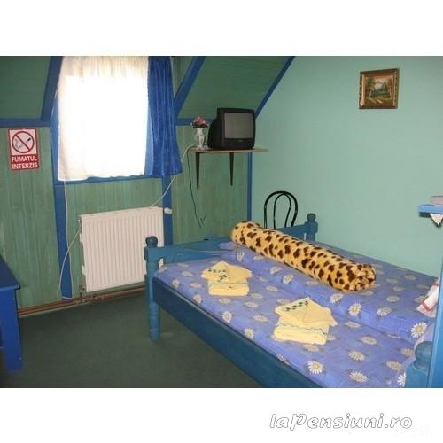 Pensiunea Ama - accommodation in  Rucar - Bran, Moeciu, Bran (04)