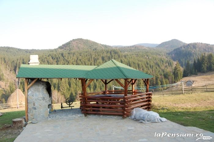 Pensiunea Fundatica - accommodation in  Rucar - Bran, Moeciu (11)
