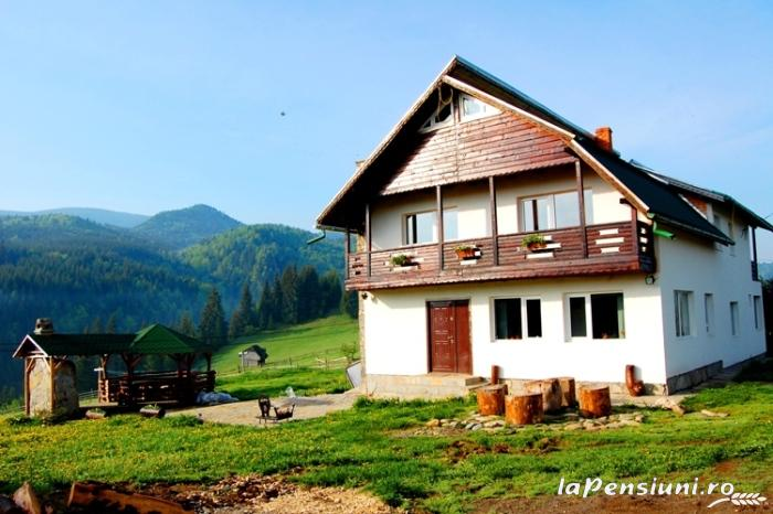 Pensiunea Fundatica - accommodation in  Rucar - Bran, Moeciu (15)