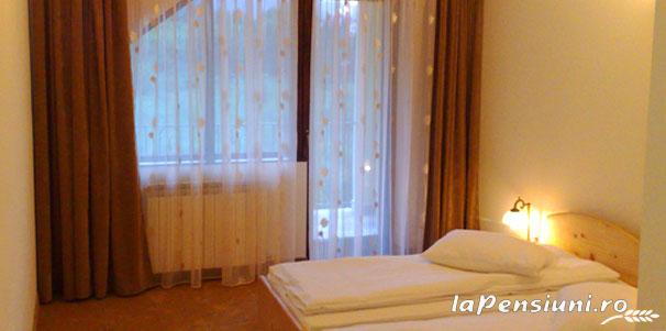 Pensiunea Dolvas - accommodation in  Apuseni Mountains (02)