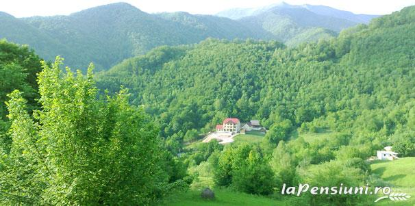 Pensiunea Dolvas - accommodation in  Apuseni Mountains (11)