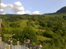 Pensiunea Dolvas - accommodation in  Apuseni Mountains (14)