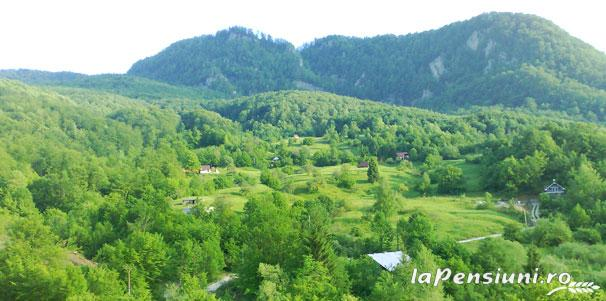 Pensiunea Dolvas - accommodation in  Apuseni Mountains (15)