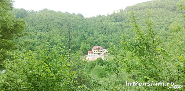 Pensiunea Dolvas - accommodation in  Apuseni Mountains (16)