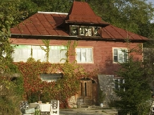 Pensiunea Tata Lice - accommodation in  Buzau Valley (01)