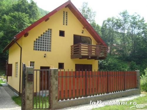Casa de vacanta Maer - accommodation in  Hateg Country (01)