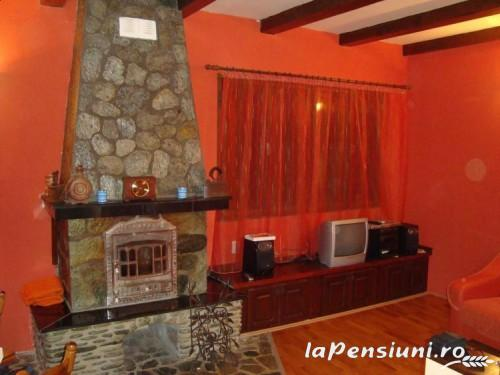 Casa de vacanta Maer - accommodation in  Hateg Country (03)