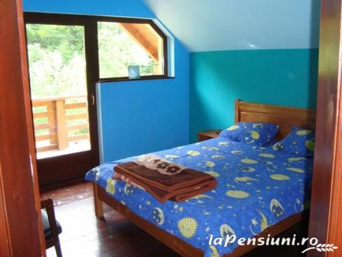 Casa de vacanta Maer - accommodation in  Hateg Country (16)