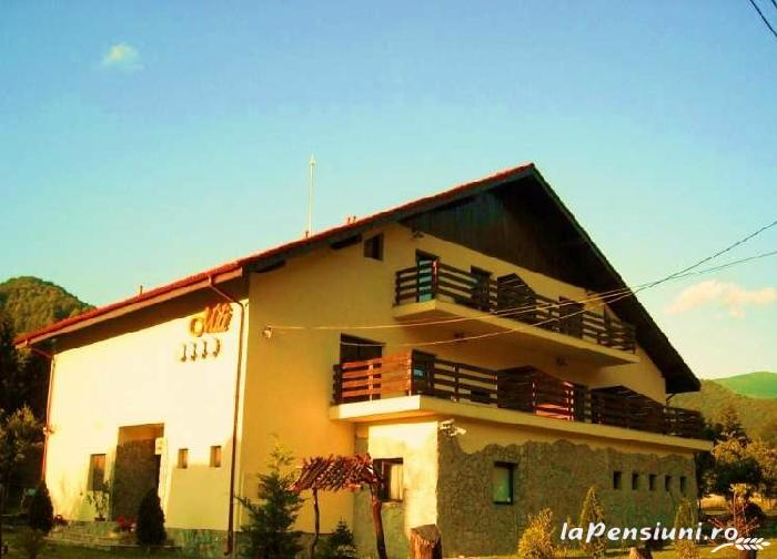 Pensiunea Mili - accommodation in  Hateg Country (01)