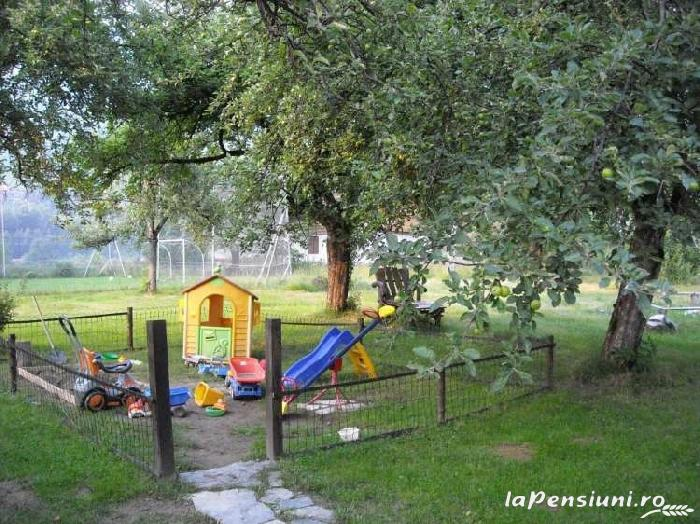 Pensiunea Mili - accommodation in  Hateg Country (02)