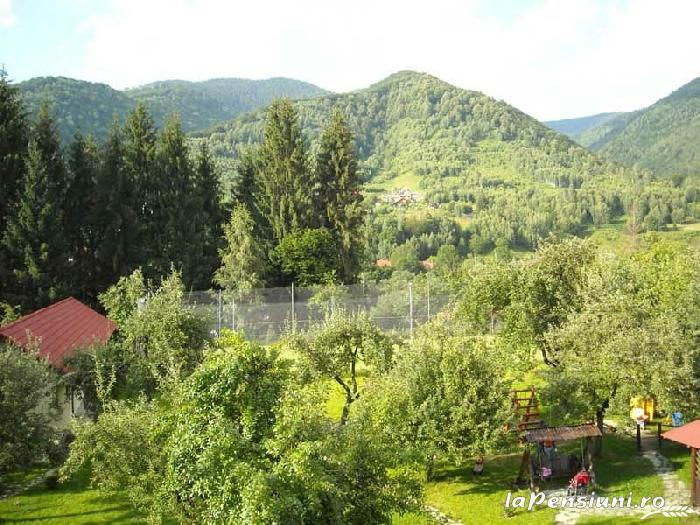 Pensiunea Mili - accommodation in  Hateg Country (07)