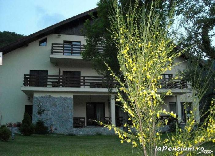 Pensiunea Mili - accommodation in  Hateg Country (10)