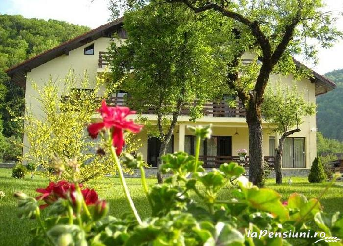 Pensiunea Mili - accommodation in  Hateg Country (11)