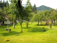 Pensiunea Mili - accommodation in  Hateg Country (12)