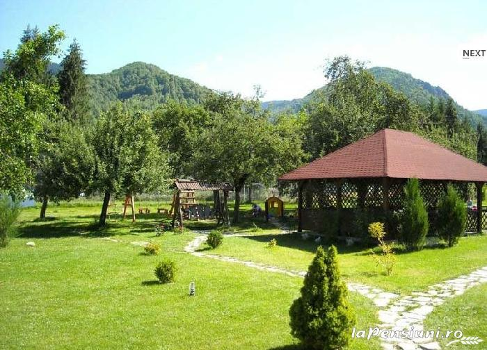 Pensiunea Mili - accommodation in  Hateg Country (16)